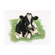 Корова (вид спереди). Набор для вышивания: мулине хб,счетный крест,лен 18  белый,размер: 60*45 см .